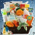 Sophisticated Baby New Baby Gift Basket