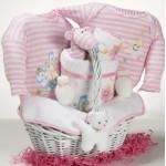 Catch-A-Star Girl Baby Gift Basket