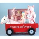 Forever Baby Book Deluxe Welcome Wagon Keepsake Baby Girl Gift
