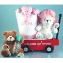 Personalized Welcome Wagon Baby Girl Gift