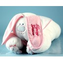 Snuggle Bunny Personalized Baby Blanket Gift Set