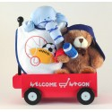 Welcome Wagon Baby Boy Gift