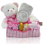 Baby Girl's First Teddy and Diaper Caddy