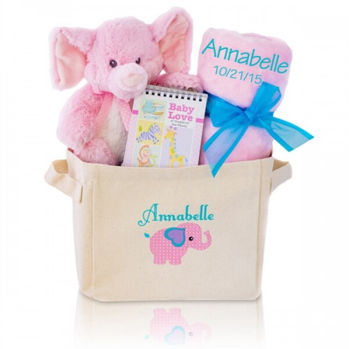 Welcome Home Baby Girl Gift Tote