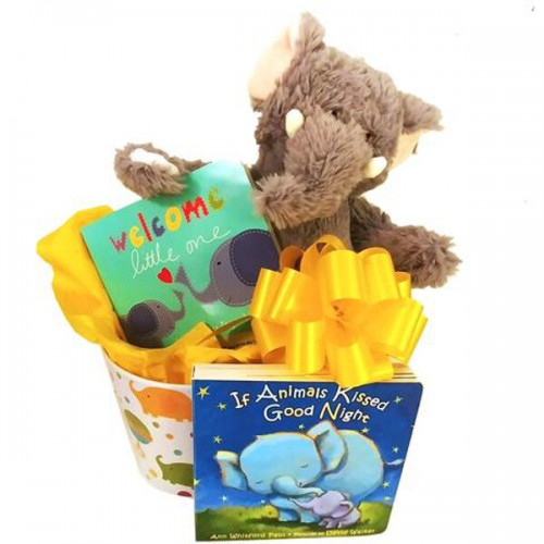 Good luck baby gift basket with elephants negle Images
